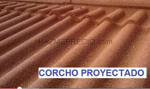 Empresas de tejados en valencia for Piscina cubierta algemesi