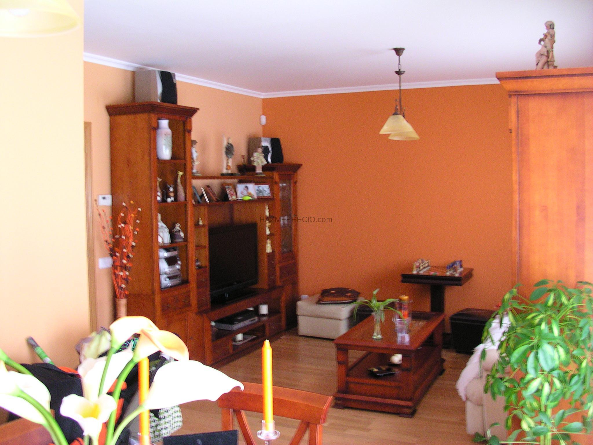 Aplicaciones y pinturas flores df services 28093 - Pinturas de decoracion de salones ...