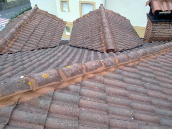 Tejados de hormigón , madera .. Cualquier clase de teja ......