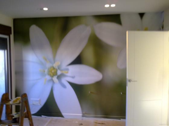 colocacion de papel pintado(mural)