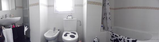 Resultado construcción de baño completo