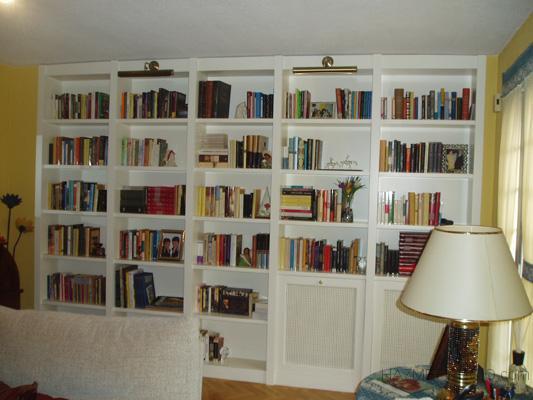 Biblioteca lacada