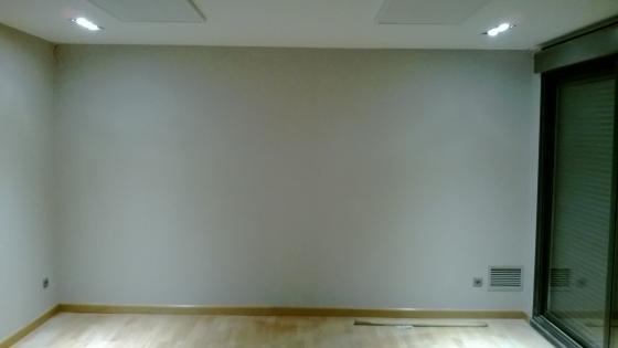 alisar y pintar Pinto