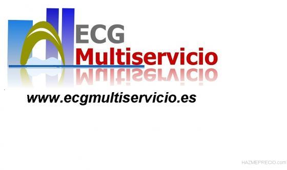 ecg web