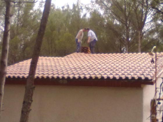 Reconstruccion cubierta renera guadalajara - Caucho para tejados ...