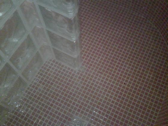 interior plato ducha de obra