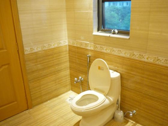 stockvault toilet108783