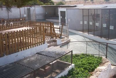 Construccion Zoo
